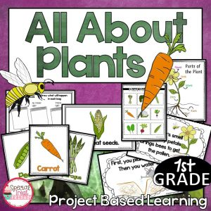 Project Based Learning on Plants